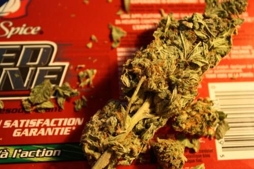 marijuana wars -- weeds a stimulant