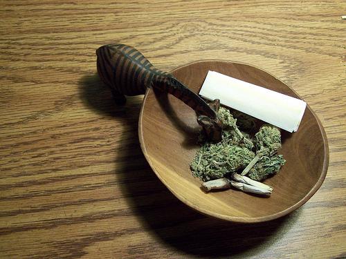 Marijuana apocalypse
