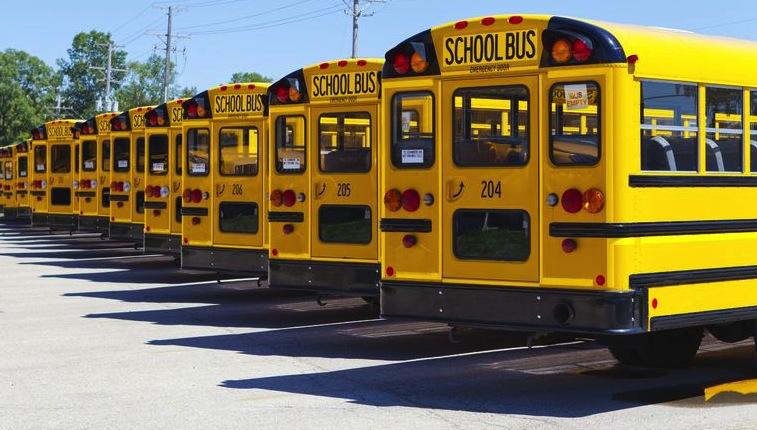 Lap-shoulder seat belts recommended for school buses.