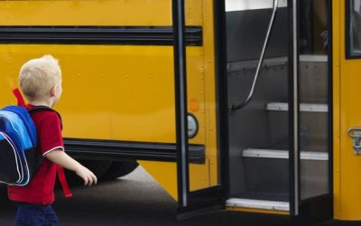 Why Aren't Seat Belts Required on Large School Buses?