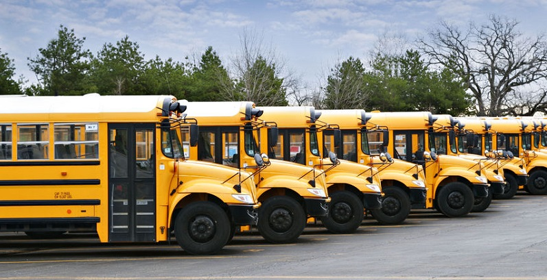 School Buses Distribute Crash Forces Differently Than Cars During Accidents