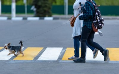 States Install Sensors to Secure Their Streets